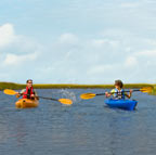 People kayaking